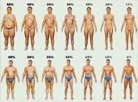 男性諸君! 女性の体型で、どこからがデブで、どこまでが、許せる?