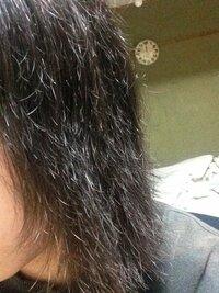 髪の毛が!!!!  妊娠7ヶ月の妊婦です。枝毛と切れ毛が激しく、アホ毛がすごいです。 枕にも切れ毛がたくさんついて抜けており、困ってます(´・_・`) ケアなど、なにかいいアイディアはありますか。   写真は髪をかわかしたあとすぐに撮ったものです。ひどいんです。