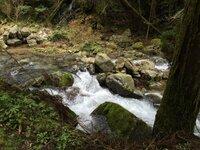 山奥での釣りについて。 昨日、興味本意で山奥の林道を車で走行しました。 携帯の電波も届かず、対向車も殆ど無いような山奥です。 川を眺めると水が綺麗で思わずうっとり、もののけ姫の世界みたいなんて思ったり。 よく分かりませんがハヤとかヤマメ?とかいるんじゃないかと、ふと思いました。 それ以前に釣り自体をしてもいいのか、禁漁区とか書いてある看板はありませんでした。 自分は素人で何も知識はないですが...