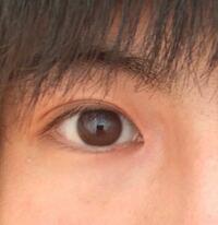 この画像の目は蒙古襞が強いのでしょうか?またこれは平行二重、末広二重のどちらでしょうか?