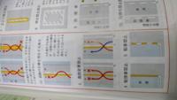 至急お願いします。 黄の実線と白の破線で白側の方から進路からはできて、黄側からはできないのはわかりますが、黄の実線と白の実線も意味は同じですか? 違うのであれば教えてください。 画像掲載しときます。 よろしくお願いします