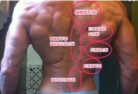 懸垂をやると、主に大円筋が筋肉痛になり 広背筋が筋肉痛になりません 広背筋上部はやや筋肉痛になったりもします  大円筋が弱いので、広背筋が追い込まれる前に大円筋がばてている、ということでしょうか? それともフォームやからのの問題ですか?