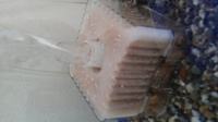 金魚の水槽に白い小さな粒があるのですが、フィルターカバーや人工水草に付いてます。