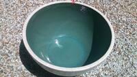 よろしくお願いします。 コメリで買った睡蓮鉢にメダカを入れると一日で死んでしまいます。雨水をためています。他の二鉢は大丈夫なんですが。なかが緑ぽい白い鉢はです。40cmぐらい、5日水を 入れて日なたにお...