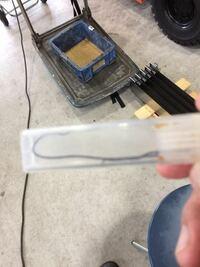 犬が黒い細長い虫を咥えてきました。 寄生虫の線虫でしょうか?長さは15センチくらいです。以前吐いた虫は白色だったので寄生虫かどうか確認したいのでよろしく
