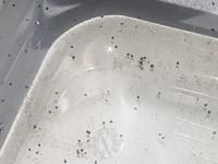 ヤマトヌマエビ、メダカ、ミナミヌマエビを飼ってる水槽でこんなのがたーくさんウヨウヨしています。 ヤマトヌマエビの赤ちゃんでしょうか? スネールも大量にいます。 スネールの赤ちゃんですか? 教えてください。