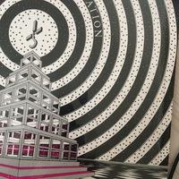 フォトショップのエレメンツで、写真のような中心から広がる円を描きたいんですが可能でしょうか?どうやって描くか教えて欲しいです。