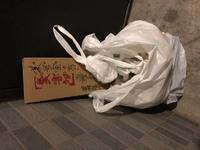 ペット可のマンションに住んでいます。中型犬2匹を飼っています。  最近、清掃の方がゴミ室から捨てられた糞(もちろん袋にきちんと入れています)を取り出して、「糞害物」と書いてゴミ室の前 に置いちゃった。...