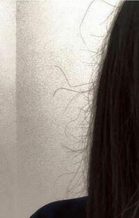 チリチリの髪の毛で悩んでいます 髪を下ろすと写真のような短い毛が大量に出てきます。しかも触るとチリチリ?ゴワゴワ?しています。 リンスをしていても髪の毛が絡まって抜けてしまい困っています。 短い髪の毛...