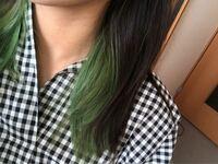 現在、緑のインナーカラーが入っています。 美容院でブリーチを3回し、緑色は自宅で カラーバターで染めました。  次は紫にしようと考えていて、カラーバターで 緑の上から色を入れようと思っています。 緑の上から、紫は綺麗に入りますか? もう1回ブリーチして緑を抜かなければ 入りませんか?  教えていただけると嬉しいです!