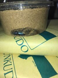 パプキンの蛹が約1週間前に羽化して、今この状況です。蛹室内ではたまに足を動かしカサカサ音を立てるのですが、掘り起こして良いですか?