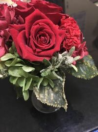 バラのお花にカビが生えました。 プリザーブドフラワー?なので全く手入れせず飾っていたら、葉っぱにカビが生えてしまいました。  どのように対処すべきでしょうか。教えてください。