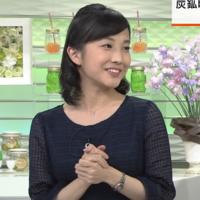 NHK、林田理沙アナについて 林田理沙さんって、物腰とか仕草が凄く淑やかっぽくて凄く好きなんですけどどう思われますか。
