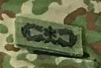 これは陸上自衛官の何の徽章ですか?  曹士レンジャーとも違いますよね。一覧を見ても見つけられませんでした。何の徽章でしょうか?
