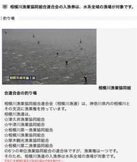 神奈川県内の川の漁業組合についてです。 中津川、相模川、道志川で釣りをしようと思い、遊漁券について調べてみると相模川魚連のHPにこのようなことが書いてあったのですが、これは遊漁券を近くの店なので買えば...
