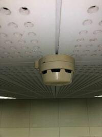 コレは防犯カメラですか?それとも火災報知器ですか!?