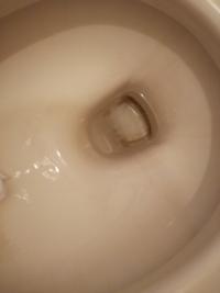 トイレの底の汚れなんですが、どうすればとれますか?トイレクリーナーとブラシではなかなか取れません。。