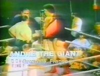画像は、1976年日本武道館での猪木対アリ戦に合わせて行われた『格闘技オリンピック』のクローズド・サーキット興業の1試合で、シェイ・スタジアムでのアンドレ対ウェップナーの異種格闘技戦でのアンドレ入場時の...
