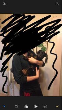 この大きさは小型犬ですか?中型犬ですか? トイプーとパピヨンのミックスの男の子です
