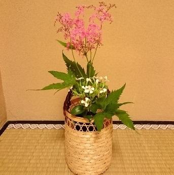 【リクエスト】 今の季節、床の間には どんな花を活けたいですか?