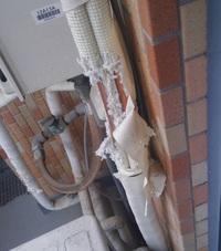 エアコンの室外のドレンが野良猫の爪研ぎでボロボロになりました。中の配管も見えます。このままエアコン動かしたらマズイですかね?