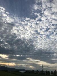 山形県内在住の高校生です! 私は山形市内の高校に通っているのですが、部活終わりに空を眺めていると地震雲?のようなものを見つけました。これは地震雲なのでしょうか?回答お願いします