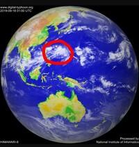 台風17号になりそうな熱帯低気圧がありますが、もう1週間もこの海域をさまよったままです。 このあとはどう動くと思いますか?