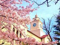関西学院大学は名門私立大学ですよね? 日本一美しいキャンパスと130年もの歴史を誇ります