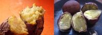 石焼き芋と蒸し栗  食べたいのはどっち?