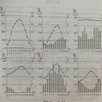【高校 生物基礎】 それぞれどのバイオームのグラフか教えてください