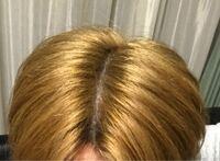 この髪色にマニパニのライラックをかなり薄めて入れたらどうなると思いますか?