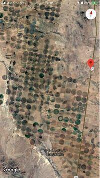 グーグルマップでメキシコ見てたらこんな場所を見つけたのですが、これって一体なんなのでしょうか?畑?