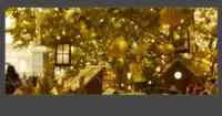 GIMPで切り抜きをしたいのですが、 画像のとおり、自由選択で選んだ範囲だけ残したくても 黄色の点線に沿った四角できりとられてしまいます。 教えてください!宜しくお願い致します。