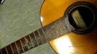 40年屋根裏で眠っていたギターを引っ張り出してきてみると指板がカビっていました。払拭出来るようなものではなさそうです、どうしたら取れるのでしょうか教えてください