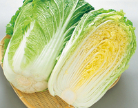 「白菜」はお鍋以外だとどんな料理に使うのが好きですか?