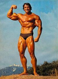 ボディビルダーを目指したら、体重は年間何キロ増えていくものですか? 脂肪よりも筋肉はおよそ3倍も重いというのを聞きました。  そこで思ったのですけど、それまで普通の人だった男性が、急遽筋トレに目覚めてボディビルダーのような体型を目指しトレーニングを続けた場合、年間におよそ体重は何キロぐらい増加するものなのでしょうか?  画像のような肉体に憧れてダイエットは気にせずに、筋肉をつけまくっ...