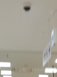 これって防犯カメラですか?火災報知器ですか?
