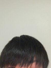 このような髪質でストパーをかけようか迷ってます。 正直前髪あたりに少しだけしか癖は無く、かけない人がほとんどだと思いますが、髪がギシギシし、アホ毛がたくさん立つので 真っ直ぐにしたいと思ってます。 この髪でストパーかけるのはおかしいでしょうか?