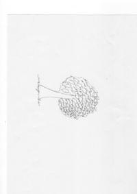 うつ病のひとが書いた絵です。 バウムテストおねがいできませんか? 見にくいしなぜか縦になってるんですけど(^^;) よろしくおねがいします。