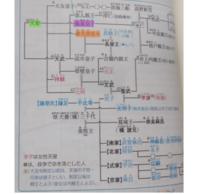 家系図の読み方がわかりません 皇室・藤原氏の関係図なのですが、 例えば天智天皇(緑線)と施基皇子(紫線)の関係、御名部皇女(オレンジ線)がどことつながっているのかわかりません 二重線は、結婚している、ということはわかりました