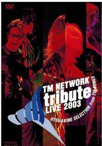 TM NETWORK ファンに聞きたいのですが、このDVDはおすすめですか?