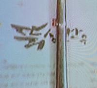 韓国ドラマ (ユン・ドゥジュン/ ペク・ジニ)  美味しい初恋〜ゴハン行こうよ〜 13話 の韓牛 炭火焼きのお店をご存知の方がいらっしゃいましたら教えて下さい。 よろしくお願い致します。