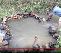 山林、森林、林などを所有されている方にお伺いをいたします。 ・ 画像、動画のような川はありますでしょうか。 画像、動画のような川は所有されている山林、森林、林の中にありますでしょうか。 いかがでしょ...
