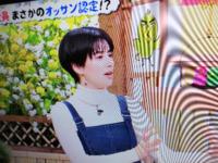 ホラン千秋さんの今までの1番短い髪型はボブですか? ショートヘアよりもロングにした事はありますか? もしありましたら写真も載せてください。 よろしくお願いします