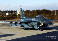 F-2戦闘機のブルーの迷彩塗装がとってもカッコ良いのですが、あの塗装には名前があるのですか?