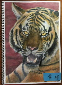 ベンガルトラの絵を描きました。評価をお願いします。   今自分が持っている100%の力を出しきりました。 もうヘトヘトです。 眼光と牙で虎の獰猛さを表現し 毛皮のモフモフ感も伝わるように苦心しました...