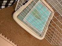 自分は犬を飼っているんですが、オシッコが完璧ではありません。 オスのワンちゃんなので足を上げてオシッコをするんですが、オシッコがトイレ用のケージから外してしまいます。  いずれケージを取ってトイレだけ...
