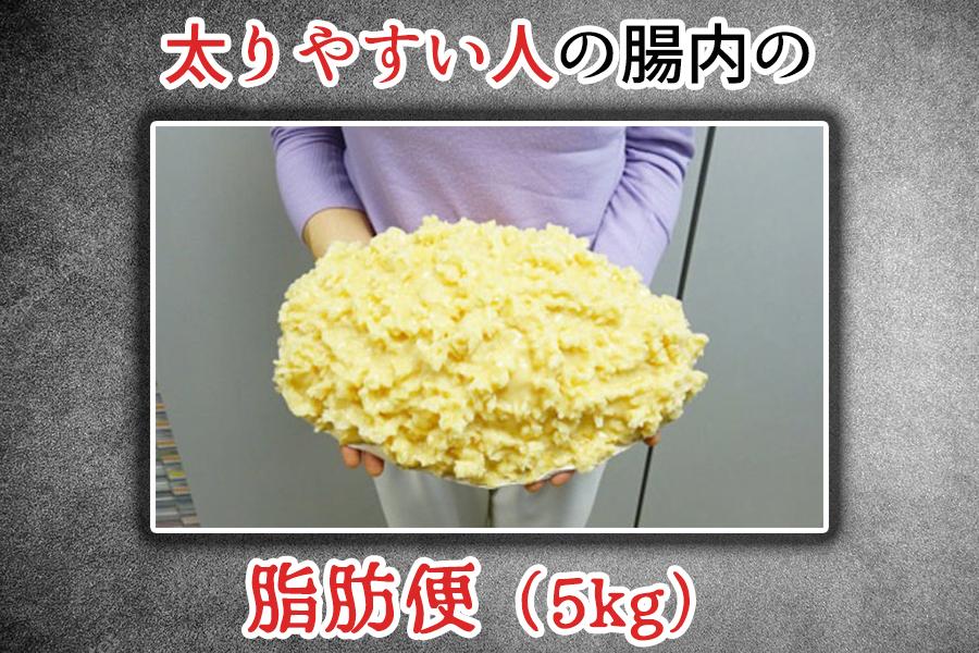 和 麹 づくし の 雑穀 生 酵素 チャレンジ コース 解約