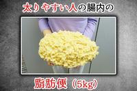 和麹づくしの雑穀生酵素を飲むと なでしこ菌の働きで脂肪便が5kg 落ちてしまうのですか? 1ヶ月で10kg痩せるのですか?