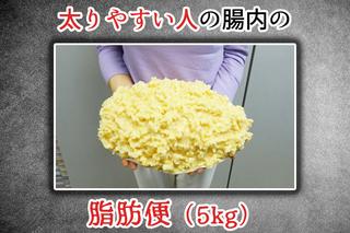 酵素 雑穀 麹 和 生 痩せる づくし の